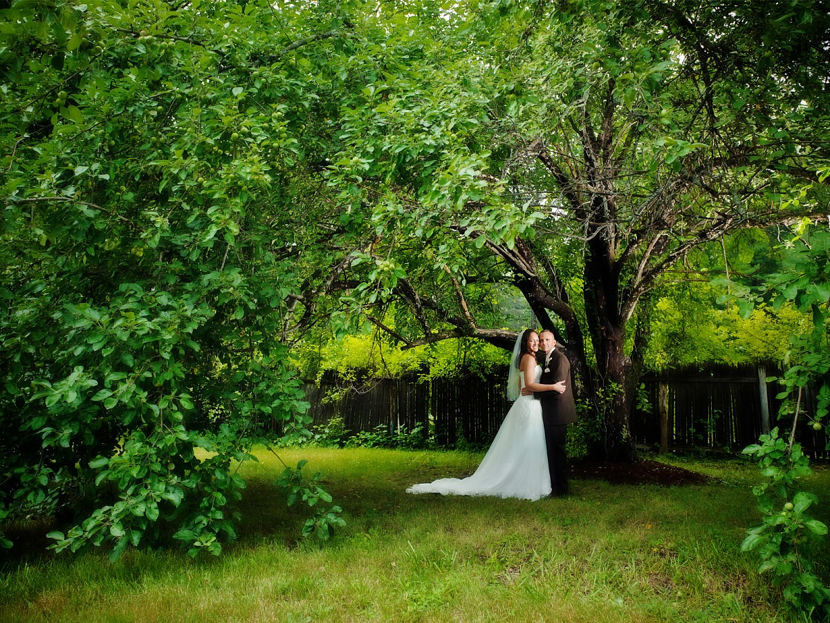 Wedding-Bridal-Portrait-Backyard-Wedding-Willow-Tree.jpg